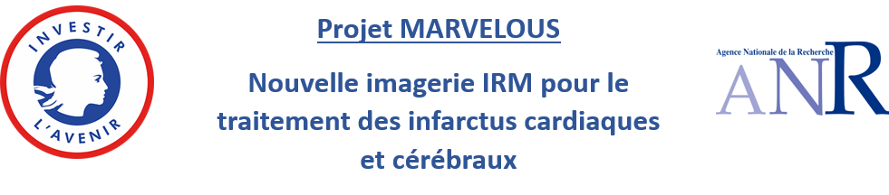 Bandeau FR MARVELOUS ANR PIA
