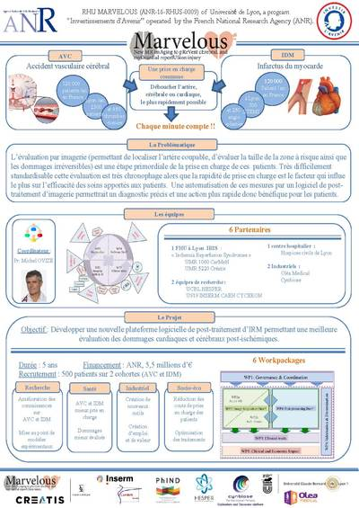 Poster JEC 2019 MARVELOUS