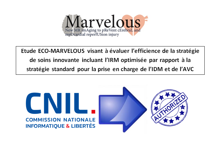 CNIL MARVELOUS